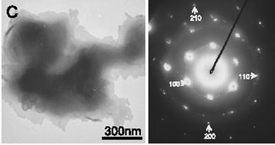 O microscópio eletrônico mostra um cristal único de lonsdaleite, à esquerda, e seu padrão associado de refração. Crédito: Universidade do Oregon