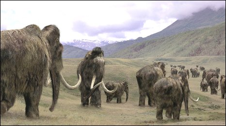 O 'mamute lanoso' foi uma das espécies extintas na América do Norte há 12.900 anos