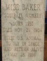 Túmulo de Miss Baker. Crédito: DCmemorials.com