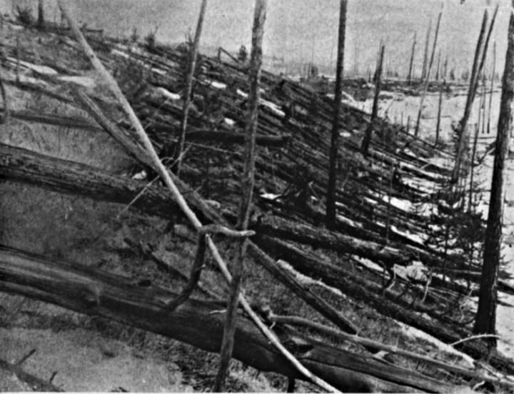A floresta siberiana foi aplainada pela explosão em Tunguska 1908