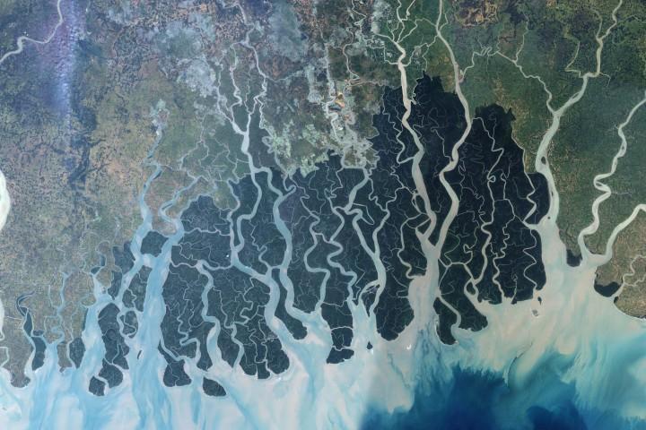Sundarbans aparece aqui em verde escuro. Crédito: NASA