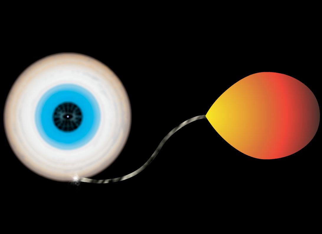 Estrela de nêutrons com disco de acresção (à esquerda), alimentando-se de matéria da companheira binária (à direita). Crédito:Bill Saxton, NRAO/AUI/NSF