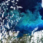 A Terra vista do espaço: plâncton em abundância pinta de azul o mar de Barents