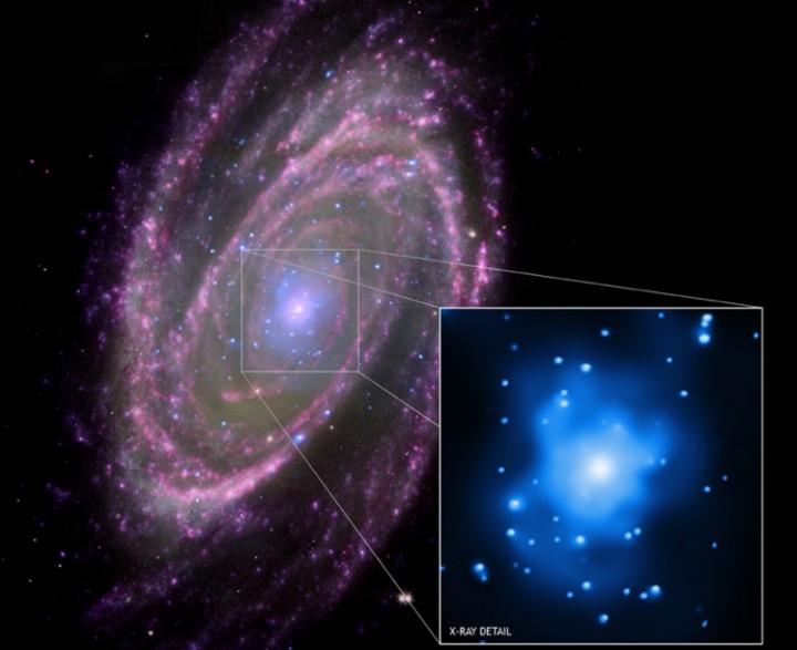 Mosaico obtido a partir da combinação de raios-X (azul) do observatório espacial Chandra; infravermelho (rosa) do telescópio espacial Spitzer; ultravioleta (roxo) do satélite GALEX; Luz visível (verde) do Hubble; mostra a M81 alimentando