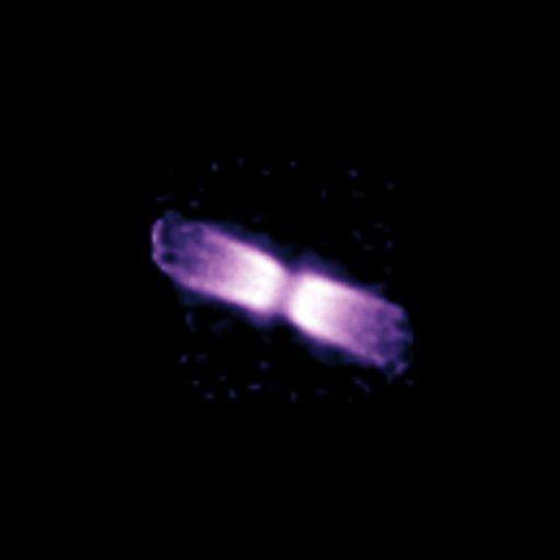 Imagem da concha de matéria em volta da V445 Puppis em dezembro de 2005