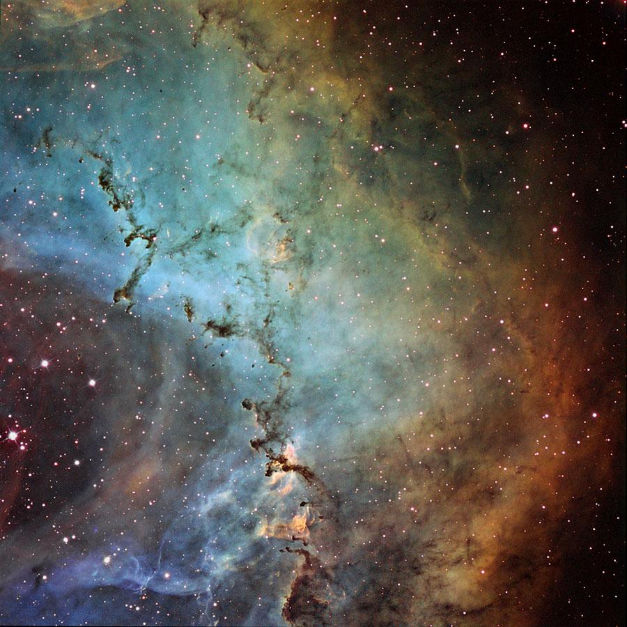 Escultura de poeira negra destacam-se na Rosette Nebula, sob a lente de John Ebersole