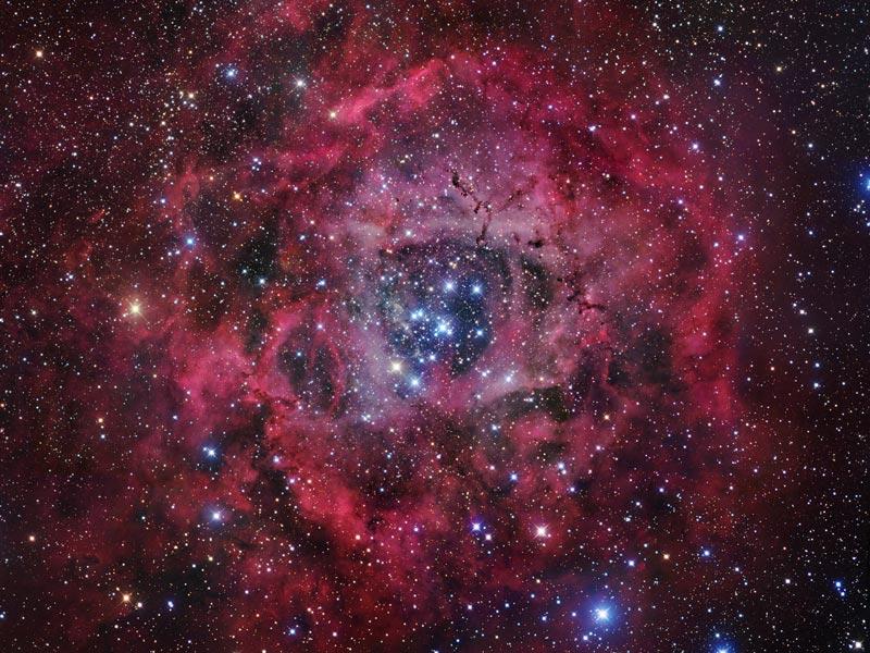 Rosette nebula por Robert Gendler: aqui vemos o formato desta notável nebulosa.