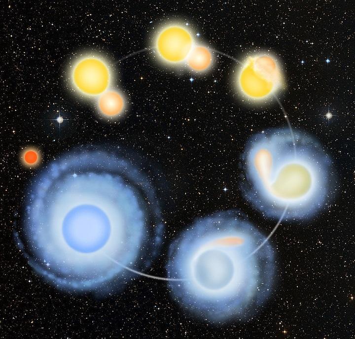 Duas estrelas colidem para formar uma estrela rejuvenescida azul. Crédito da ilustração: Barry Roal Carlsen/Universidade de Wisconsin-Madison.