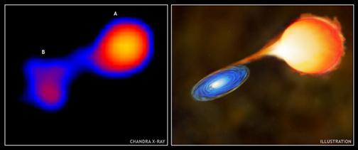 Anã Branca atraída por um Buraco Negro (Chandra x Ilustração)