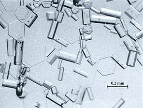 Cristais hexagonais de gelo, como os desta amostra, encontrados em nuvens Cirrus, são responsáveis pela formação de halos.