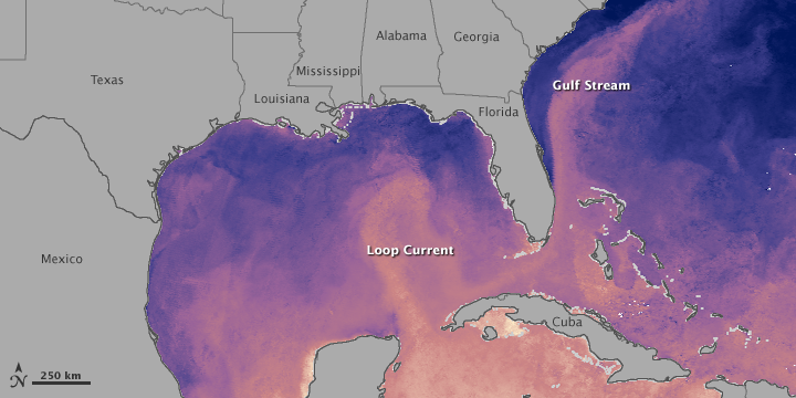 O golfo do México e suas correntes