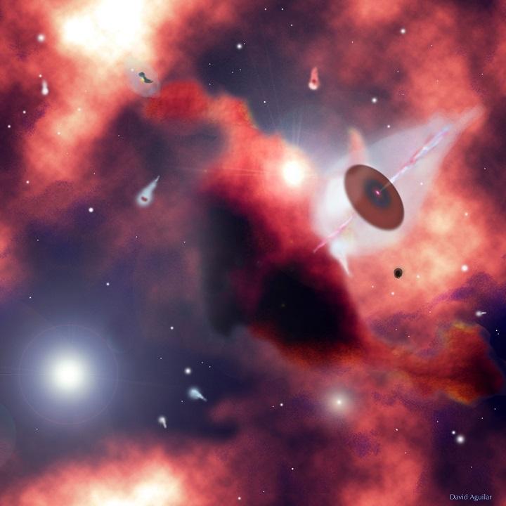 Casulos e proto sistemas por David Aguilar