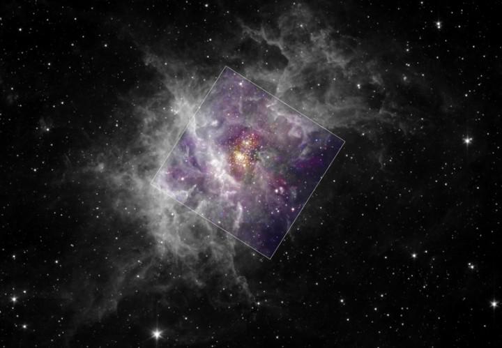 No centro da imagem temos o aglomerado Westerlund 2, dentro do berçário estelar RCW49. Créditos - raios-X: Y.Nazé, G.Rauw, J.Manfroid (Université de Liège), CXC, NASA / Infravermelho: E.Churchwell (Universidade de Wisconsin), JPL, Caltech, NASA