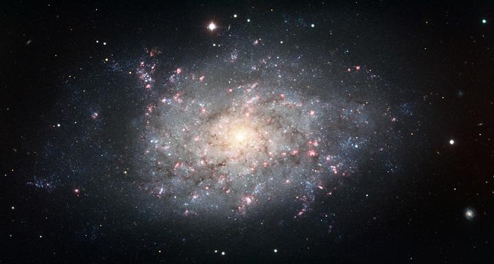 Imagem da galáxia espiral caótica NGC 7793, observada através do dispositivo FORS instalado no Very Large Telescope do ESO em Cerro Paranal, Chile. A imagem é uma composição de dados obtidos usando os filtros B, V, I e Hidrogênio-alfa. Crédito: ESO