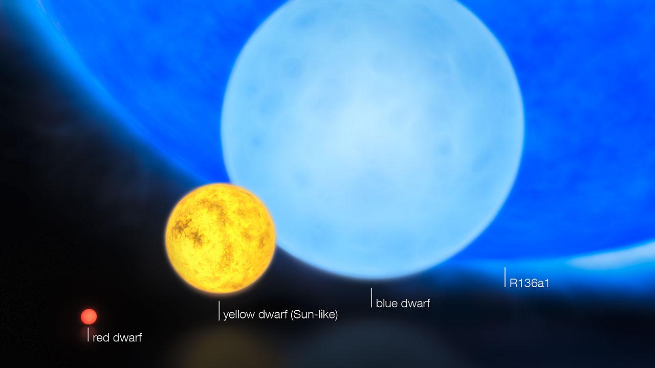 Comparativo do tamanho das estrelas (da esquerda para a direita): anã vermelha (0,1 M☼), anã amarela (o nosso Sol), anã azul (8 M☼) e a estrela mais massiva hipergigante azul R136a1 (300 M☼)