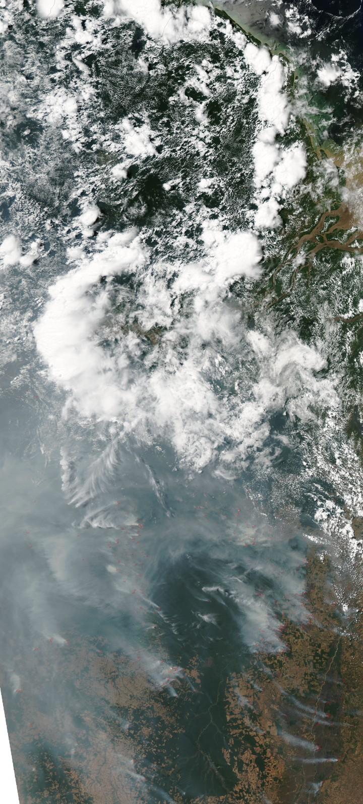 Brasil em chamas! Clique na imagem para ver detalhes em alta resolução. Cortesia da imagem: NASA MODIS Rapid Response Team da NASA GSFC e Riebeek Holli.