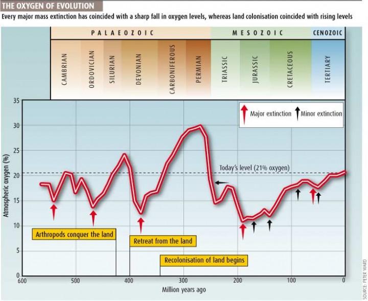 A evolução da concentração do oxigênio atmosférico ao longo do tempo. Crédito: Peter Ward & New Scientist