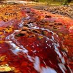 Poderiam as bactérias extremófilas do Rio Tinto sobreviver no clima hostil marciano?