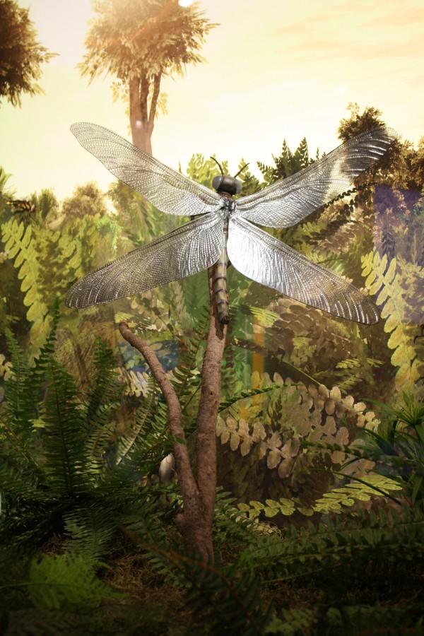 A libélula gigante Meganeura monyi tinha uma envergadura de mais de 1 metro e meio quando o oxigênio da atmosfera terrestre estava acima de 30% de concentração.