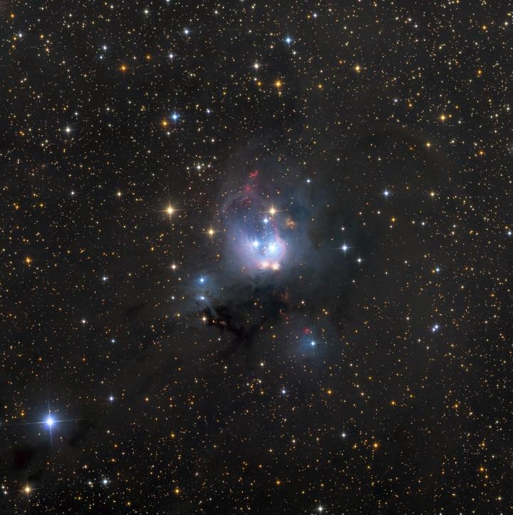 O aglomerado estelar aberto NGC7129 capturado pela lente de Ken Crawford. Clique na imagem para ver a versão em alta resolução que pode ser ampliada (zoom). Crédito©: Ken Crawford