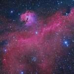 A nebulosa da Gaivota revelada por Michael Sidonio