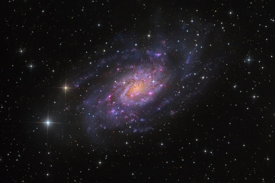 http://apod.nasa.gov/apod/image/1503/NGC2403-HaLRGBMP.jpg