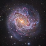 M83: a Galáxia dos Mil Rubis por Robert Gendler