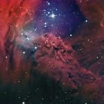 A 'Nebulosa da Pele da Raposa' por John Vermette