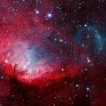 A Tulipa e o microquasar Cygnus X-1 por Ivan Eder