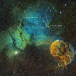 A furtiva Nebulosa da Medusa revelada por Bob Franke