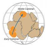 O deslocamento continental e suas implicações na evolução da Terra