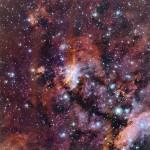 Gum 56: reciclagem cósmica na Nebulosa do Camarão