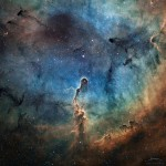 A Nebulosa Tromba do Elefante em IC 1396 por Canonne, Bernhard, Chaplain e Bourgon