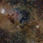 Poeira de estrelas em Perseus por Lynn Hilborn – A Nebulosa do Fantasma Voador