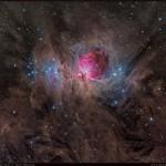 M42: a grande nebulosa de Órion por Terry Hancock